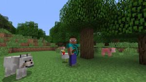 Fait de cubes et de gros pixels, Minecraft est le 3ème jeu le plus vendu de l'histoire.