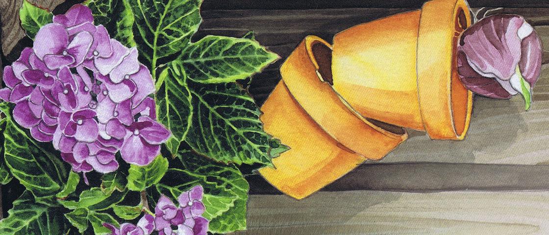 Cottage Garden : Le Patchwork à fleurs de pot et sans cible